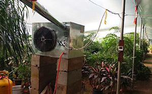 燃气暖风机花卉业应用
